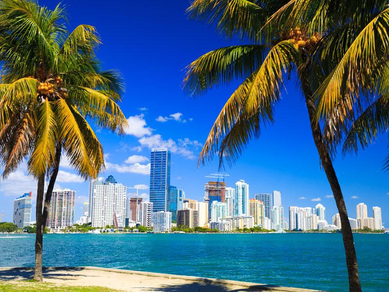 Miami_Konare